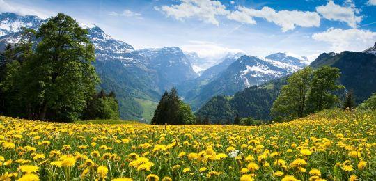Offerte Last Minute Montagna > Vacanze in Hotel con Spa in Montagna